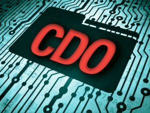Chief Data Officer [CDO]