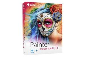 painter essentials 5 box