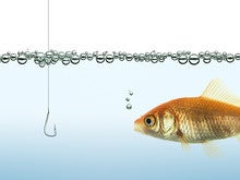 Teach your execs well: Stop phishing in the C-suite