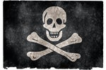 pirate flag pirates piracy