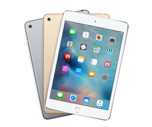 ipad mini 4 primary