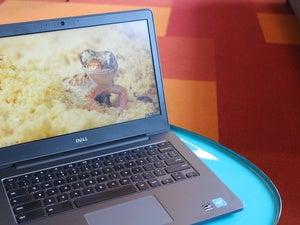dell chromebook 13 left 3qtr view