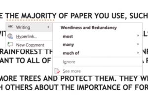 Microsoft word editor 2