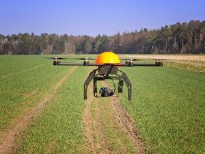 drone fields