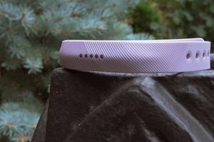 fitbit flex 2 primary